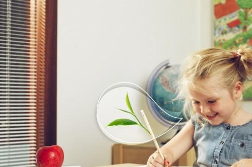 Ruggengraat voor het klimaat: Hoe maken we onze scholen sneller duurzaam?'