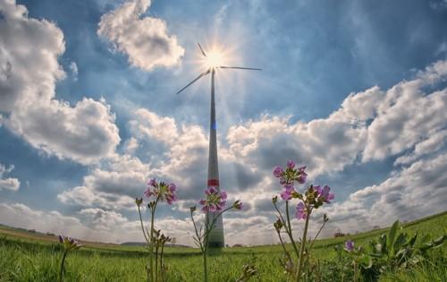 Ruggengraat voor het klimaat: regie in een complex spelersveld